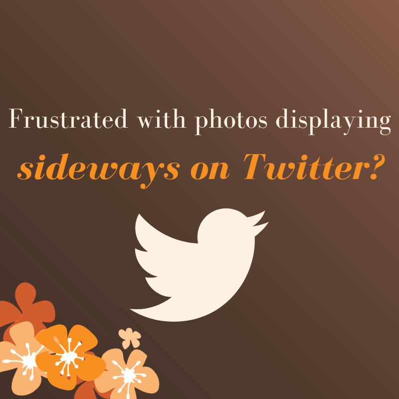 Frustrated with photos displaying sideways on Twitter?
